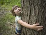 Экологическое воспитание в процессе преподавания географии в школе
