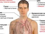 Анемия, симптомы и ее лечение