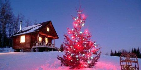 Как организовать встречу Нового года и Рождества на природе   Фото с сайта tripadvice.ru
