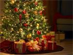 МЧС советует, как избежать неприятностей в новогодние праздники