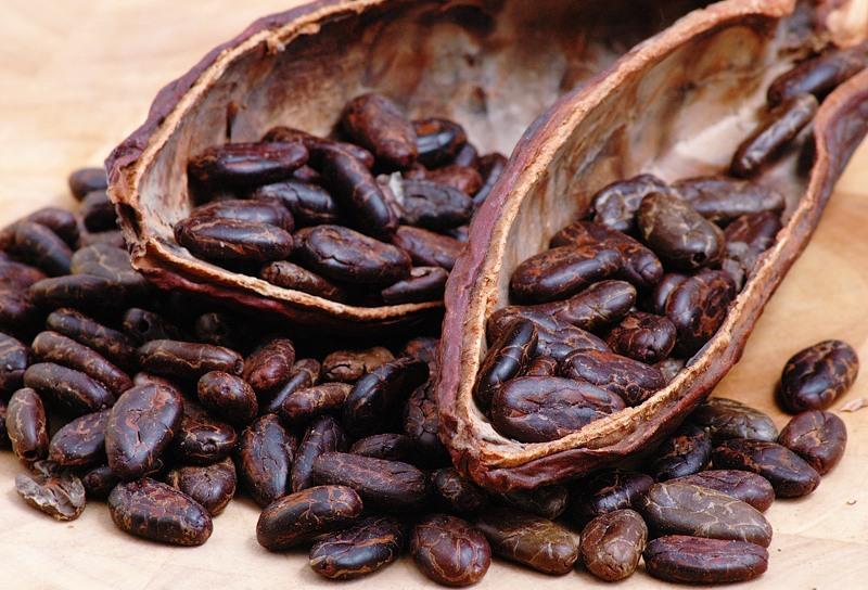 Какао улучшает память, считают ученые | Фото с сайта fotki.yandex.ru