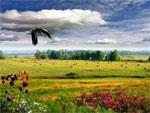 Классный час на тему «Мир вокруг нас» | Фото с сайта stihi.ru