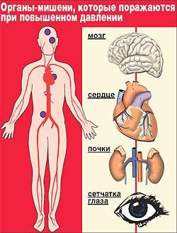 shkola-profilaktiki-arterialnoy-gipertenzii