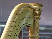 Музыкальные инструменты: От арфы до рояля | Фото с сайта musicroyal.ru