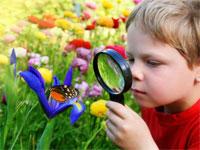 Эксперименты — окно в удивительный мир природы | фото с сайта siklis.com