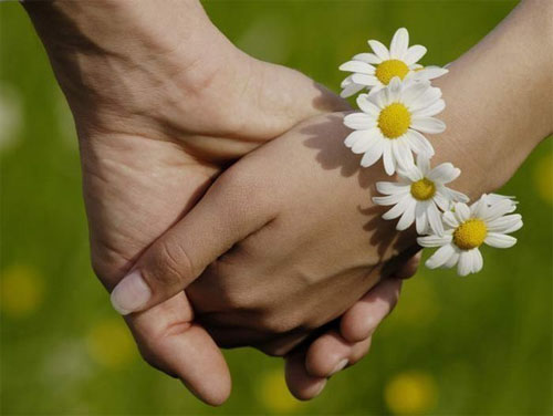 День семьи, любви и верности | фото с сайта www.tsogu.ru