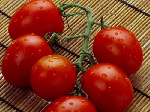 Помидоры могут снизить риск инсульта, установили ученые | Фото с сайта www.e1.ru