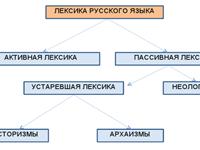 Лексика русского языка
