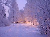Какую погоду обещают синоптики в декабре | Фото с сайта fotki.yandex.ru