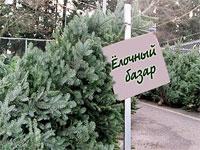 Украинцы смогут проверить елки на радиацию по смс | Фото с сайта vkontakte.ru