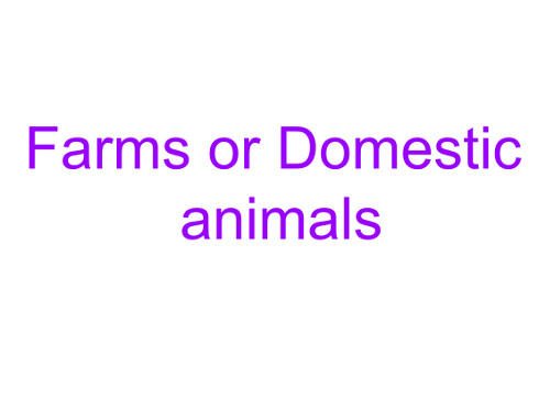 Презентация «Domestic and wild animals»