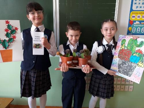 Проект на тему «Выращивание кактусов в домашних условиях»