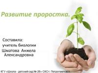 «Развитие проростка»