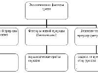 Экологические факторы среды