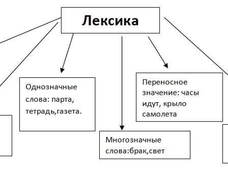 Лексика. Фразеология