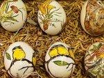 Подготовка к пасхальной трапезе: интересные способы окраски яиц | © РИА Новости. Татьяна Фирсова