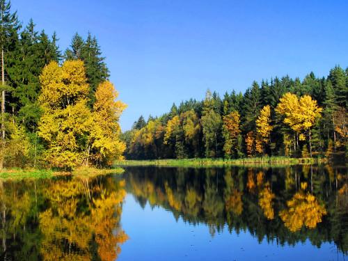 КВН на тему «Осень, осень, милости просим»